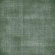 fond vert-blanc