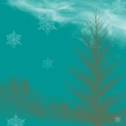 hiver étoilé 2