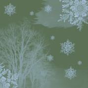 hiver étoilé 6