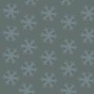 hiver étoilé 8