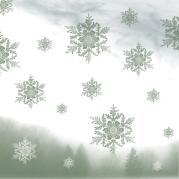 hiver étoilé