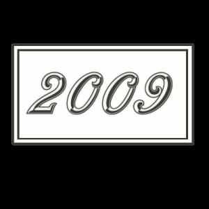 2009 bl