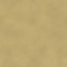 texture cuir 2