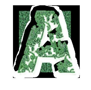 A vert