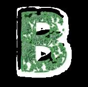 B vert