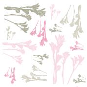 fdp plantes