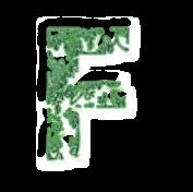 Fvert