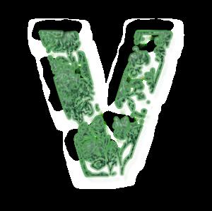 Vvert
