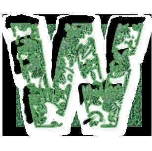 Wvert