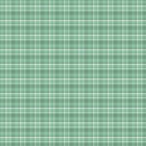 petit vichy vert