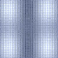 petit vichy bleu