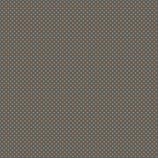 petits pois citrouille sur fond gris