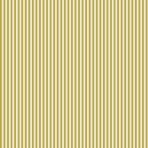 rayures moutarde