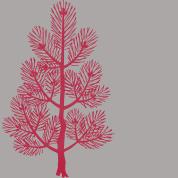 papier gris sapin rouge