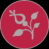 tag rond fleur
