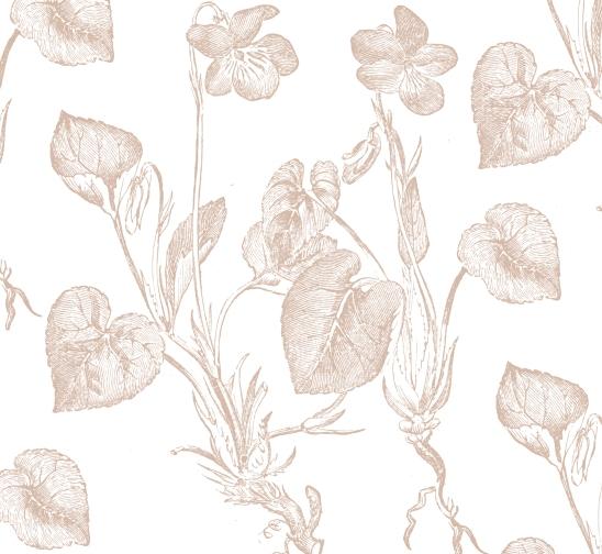 blanc fleurs beiges