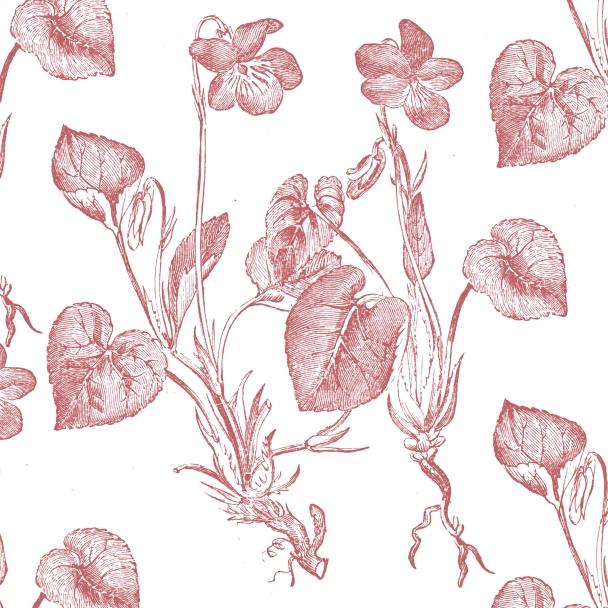 blanc fleurs bordeaux