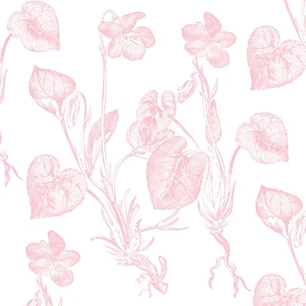 blanc fleurs corail