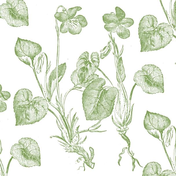blanc fleurs vertes