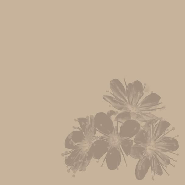 été beige brun