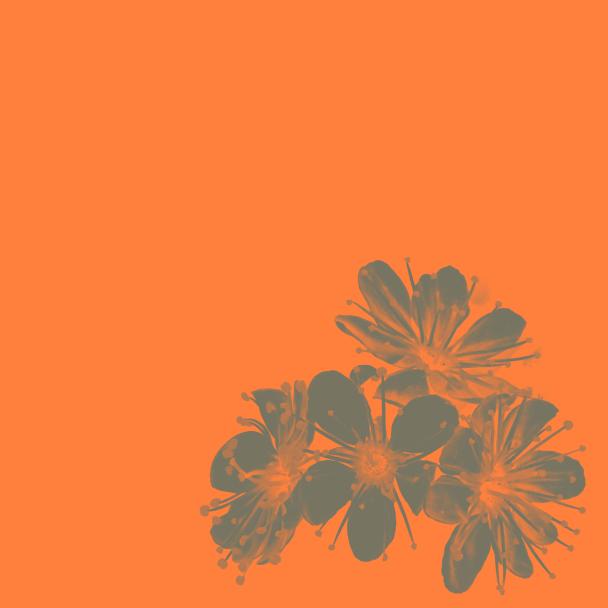été orange vert