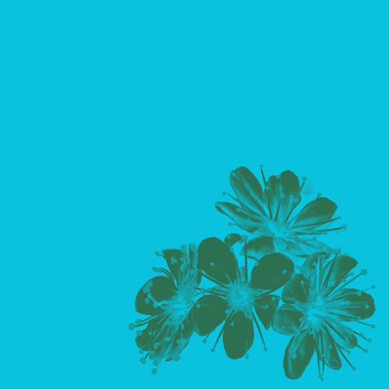 été turquoise vert