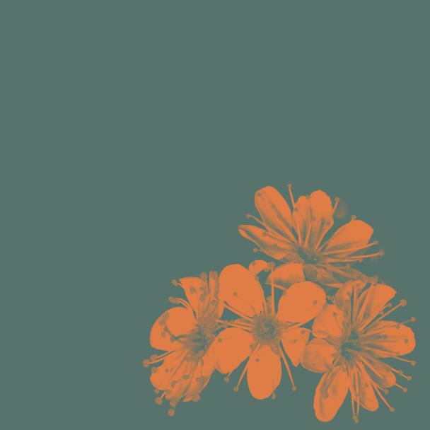 été vert orange