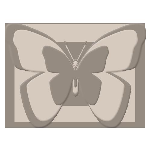 pap 6