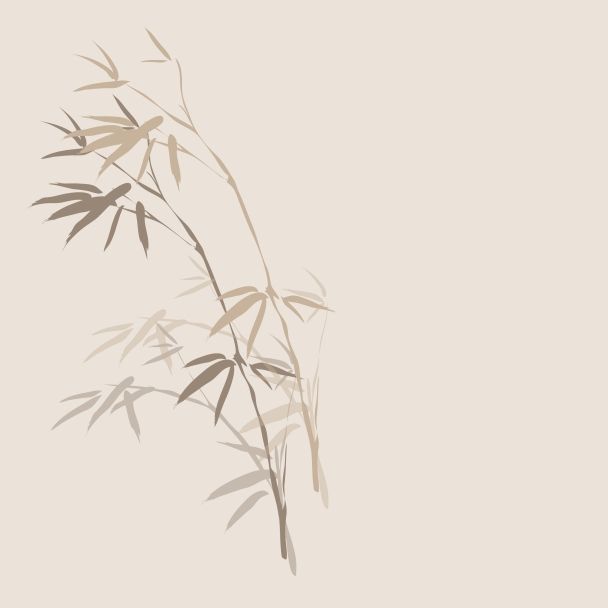 bambou brun beige blanc