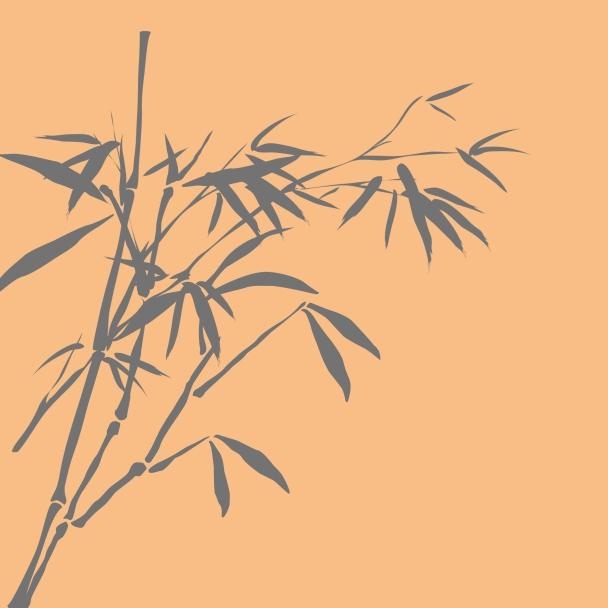 bambous orange brun