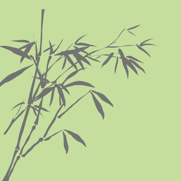 bambous vert brun