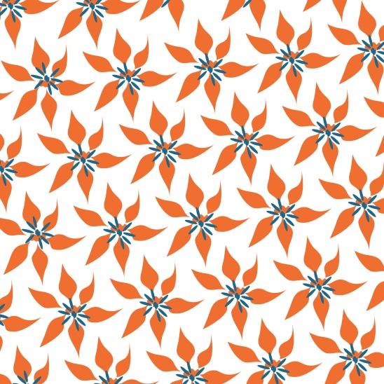 fleurs oranges sur blanc