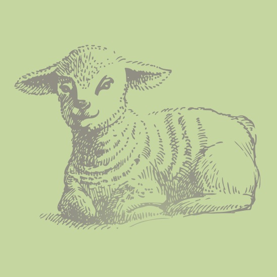 mouton de paques gris