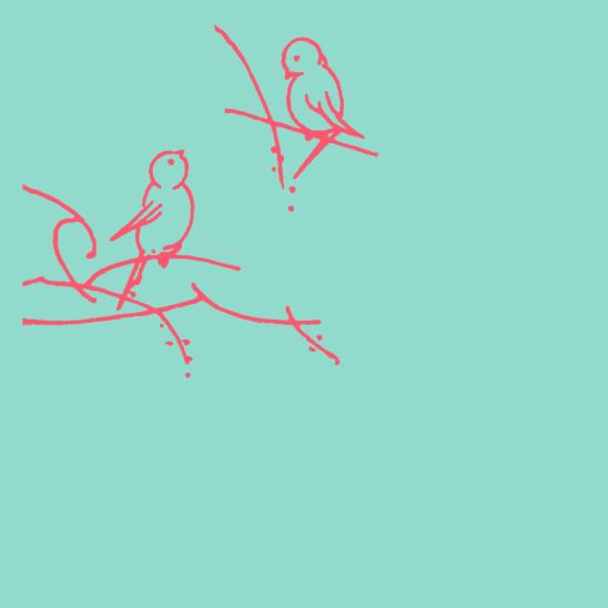 oiseaux fushias sur turquoise