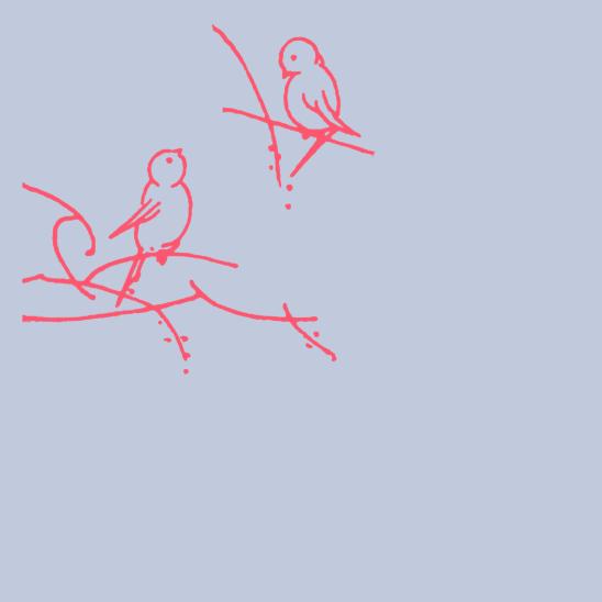 oiseaux turquoise sur bleu