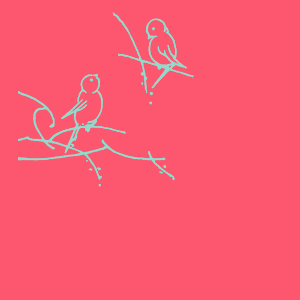 oiseaux turquoise sur fushia