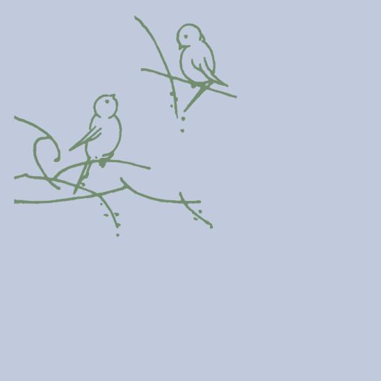oiseaux verts sur bleu