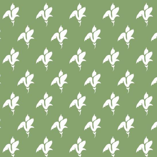 tulipes blanches sur fond vert