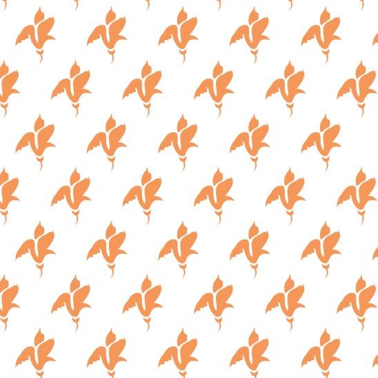 tulipes oranges sur blanc