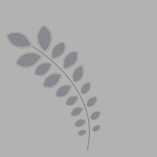 branche gris sur gris