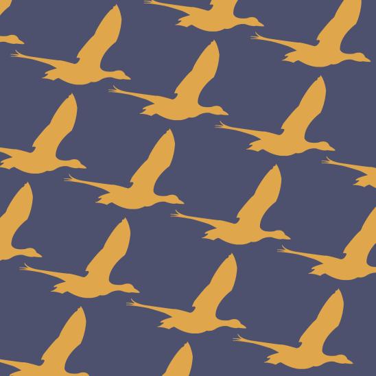 oies jaunes sur bleu