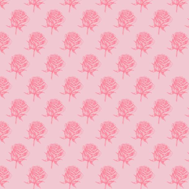 roses fushia sur rose