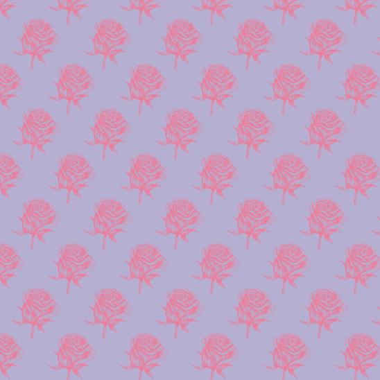 roses fushia sur violet