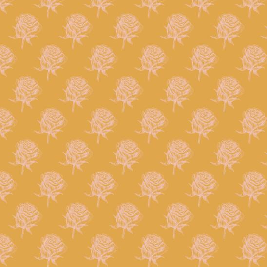 roses jaunepale sur jaune
