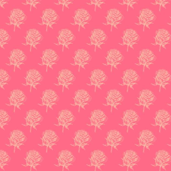 roses jaunes sur rose fushia