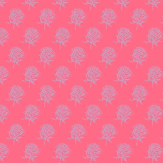 roses mauves sur rose fushia