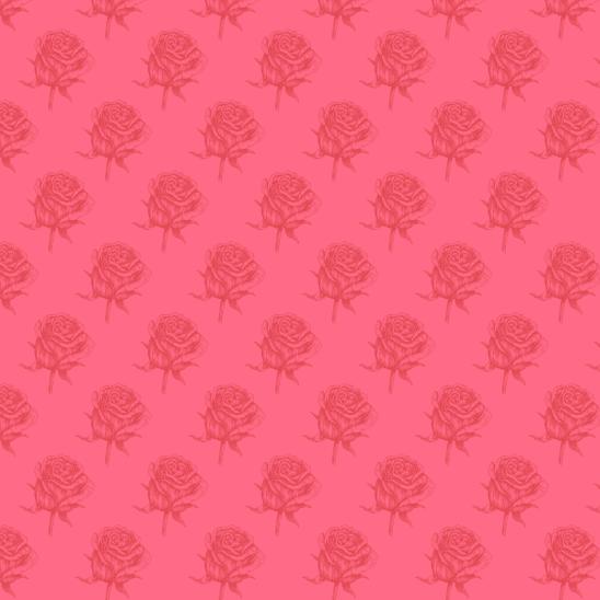 roses rouges sur rose fushia