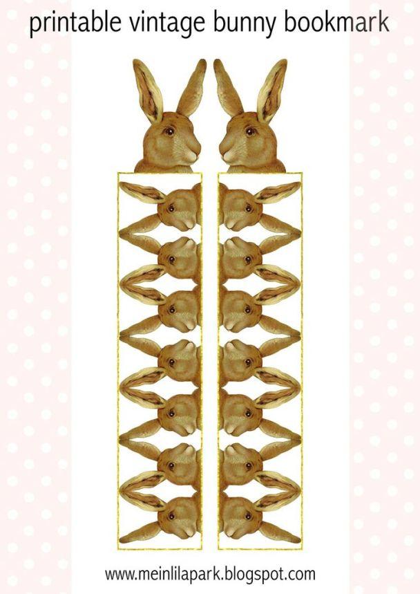 signets lapins