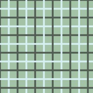 carreaux sur vert clair