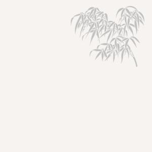 bambous copie